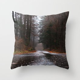 The Forest Road Throw Pillow
