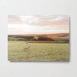 Sunset on the Downs, England Metal Print