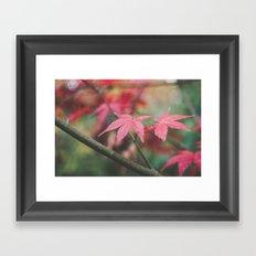 Autumn, The Red Leaf. Framed Art Print