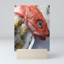 Red Fish Shrimp Market Mini Art Print