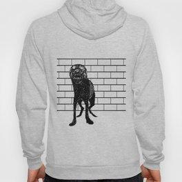 guard dog Hoody