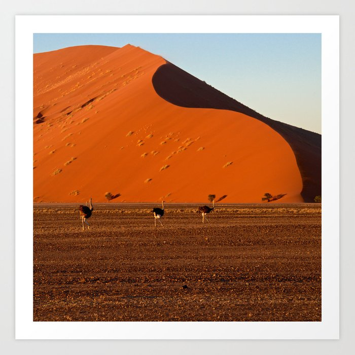 Big Daddy Dune At Sossusvlei Namibia Art Print By Annieseymour
