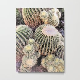 Cactus Patch Metal Print
