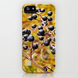 autumn fruit iPhone Case