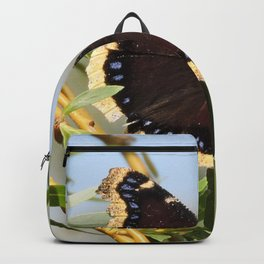 Mourning Cloak Butterfly Sunning Backpack