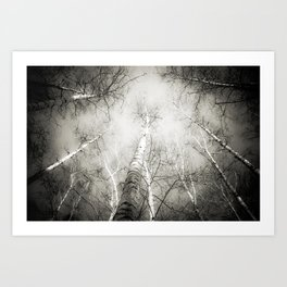Into the Forest - Nr. 5 Art Print