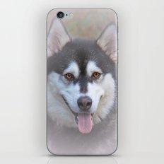 The look iPhone & iPod Skin