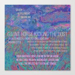 gaunt horse Canvas Print