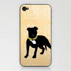 Black Staffordshire Bull Terrier Dog Print iPhone & iPod Skin