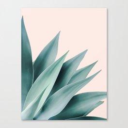 Agave flare II - peach Canvas Print