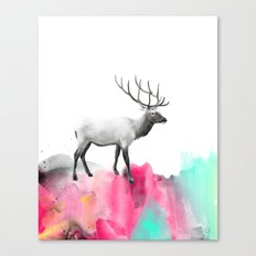 Wild No. 2 // Elk Canvas Print