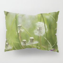 Three-Quarters of a Wish Left painterly Pillow Sham