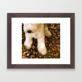 Leo in the Leaves Framed Art Print