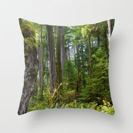Cathedral Grove, Vancouver Island BC Throw Pillow