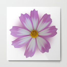 Light purple flower Metal Print