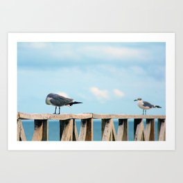 Bird collection _02 Art Print