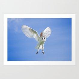 Flying Barn Owl Art Print