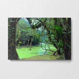 Jungle - Guatemala Metal Print