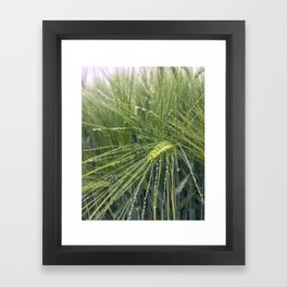 Droplets... Framed Art Print