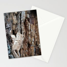Decomposing Wood Stationery Cards