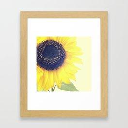 FLOWER 046 Framed Art Print