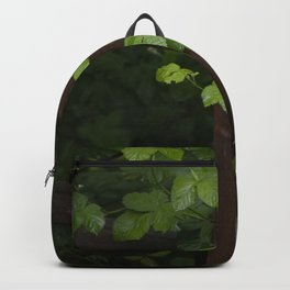 Berry Vined Fence Backpack