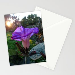 Solstice Flower Stationery Cards