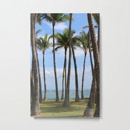 Palms in Kapa'a Metal Print