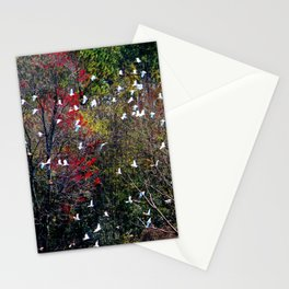 Ibises In Flight Stationery Cards
