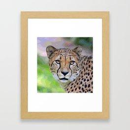 AnimalPaint_Cheetah_20171201_by_JAMColorsSpecial Framed Art Print