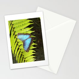 Costa Rican Beauty  Stationery Cards