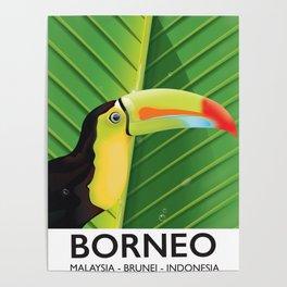 Borneo Toucan travel poster Poster