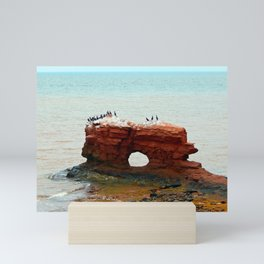 Sandstone Formation in PEI Mini Art Print