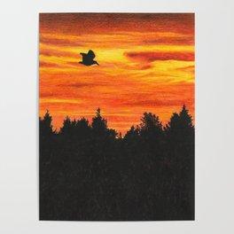 Sunset sky with bird Poster