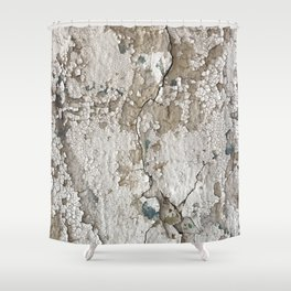 White Decay III Shower Curtain