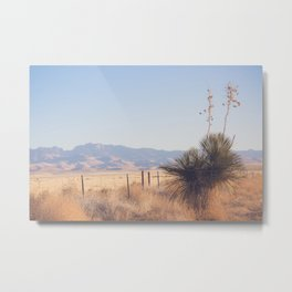 Marfa Morning Light Metal Print
