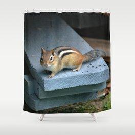 Chip on the Block: Adirondack Chipmunk Shower Curtain