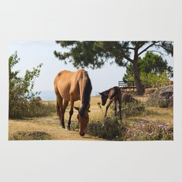 horses Rug