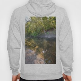 Where Canoes and Raccoons Go Series, No. 25 Hoody