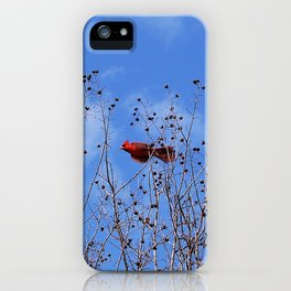 Little Birdie iPhone Case