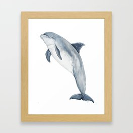 Bottlenose dolphin Framed Art Print