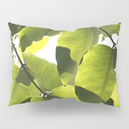 Close Up Leaves Pillow Sham