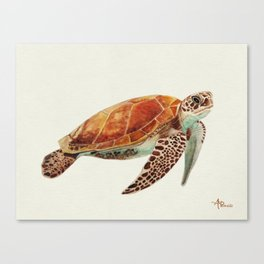 Turtle Watercolor Canvas Print