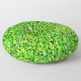 Texture of grass Floor Pillow