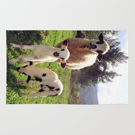 Ewe and Twin Spring Lambs Rug
