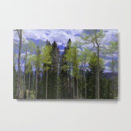 Spring in Aspen Country Metal Print