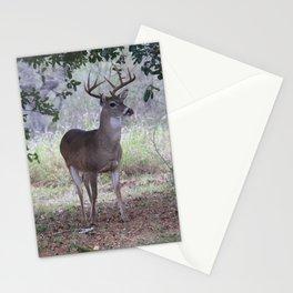 Buck in the Oak Mott Stationery Cards