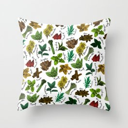 Tea Flavors // assorted teas for your enjoyment Throw Pillow
