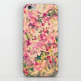 Vintage Pink Crabapple Tree Blossoms in the Sun iPhone Skin