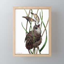 Baby Bird I Framed Mini Art Print